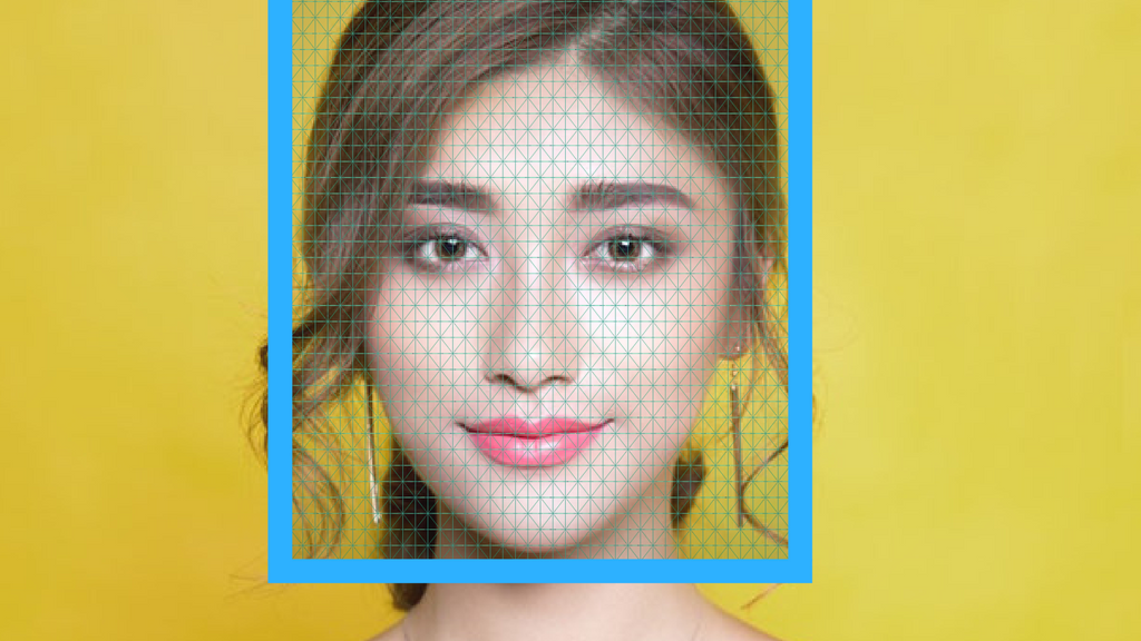 A Close Look at China's Face Recognition Technology