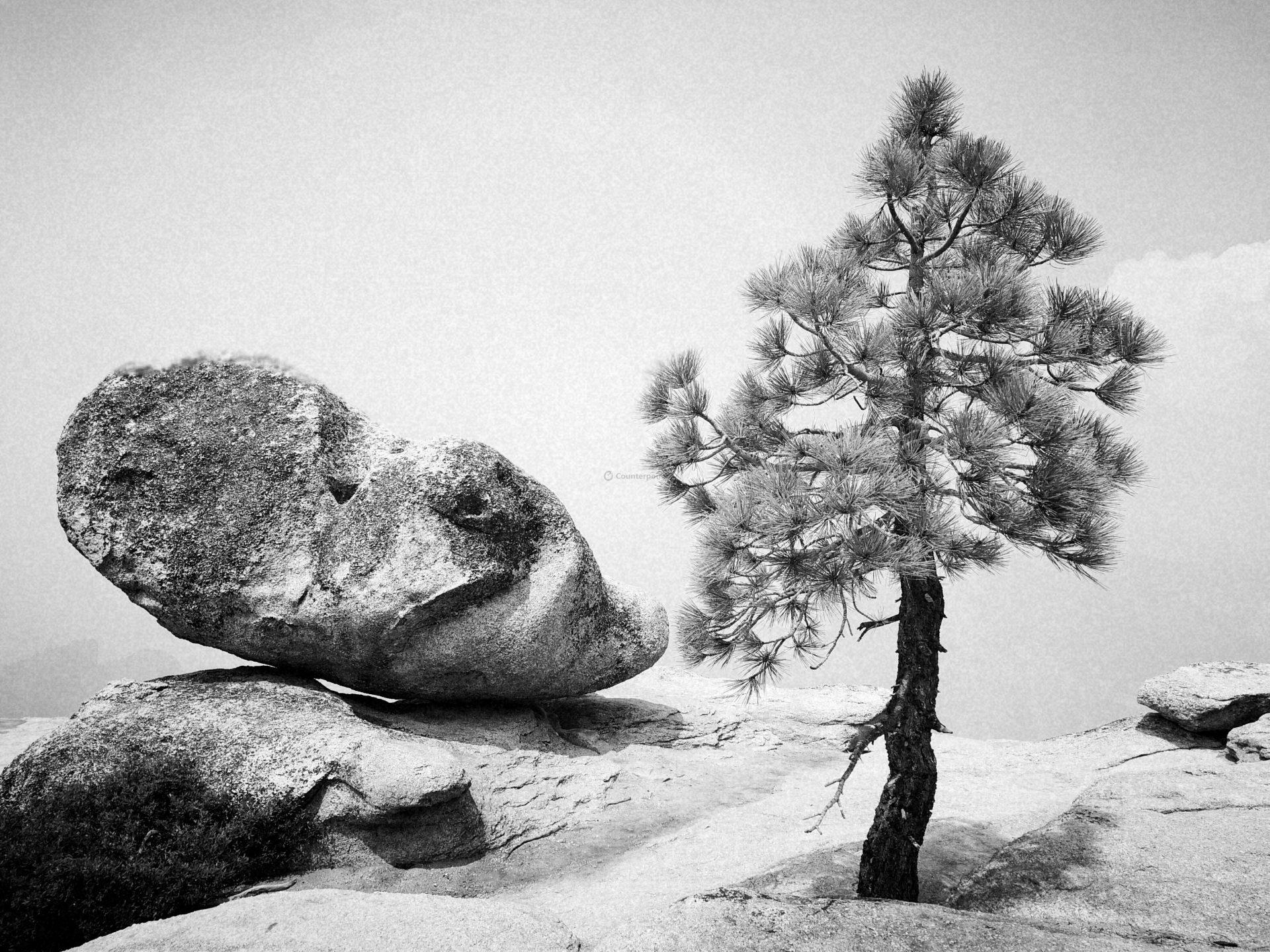 Tree-and-Rock-Yosemite-by-Peter-Huawei-P10
