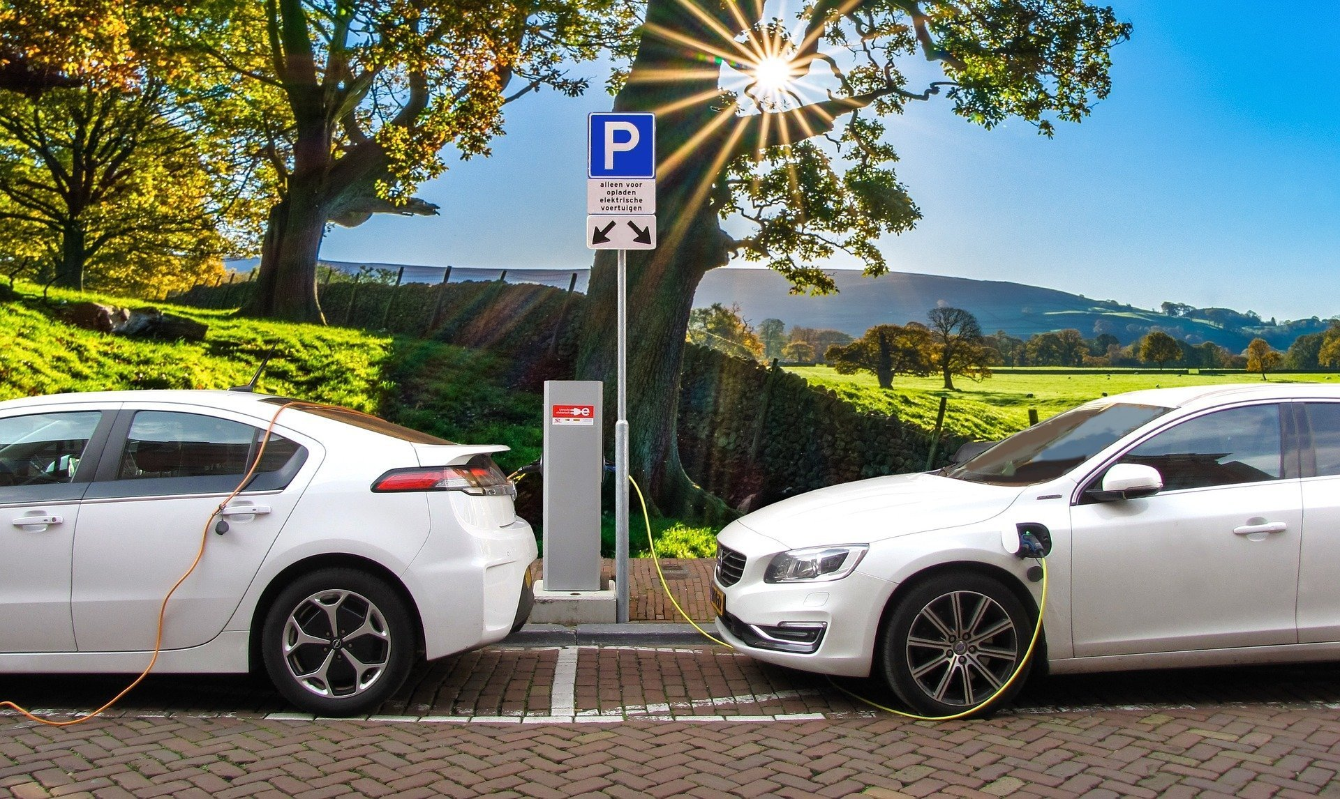 Global Passenger Electric Vehicle Sales Fall 8 In Q3 2019 Counterpoint Research